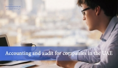 Article image: Accounting and audit for companies in the UAE
