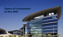 Article image: Types of companies in the UAE
