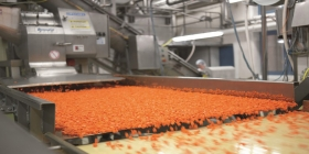 Article image: Food industry in the UAE