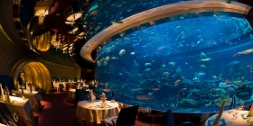 Artilce image: The restaurant business in the UAE