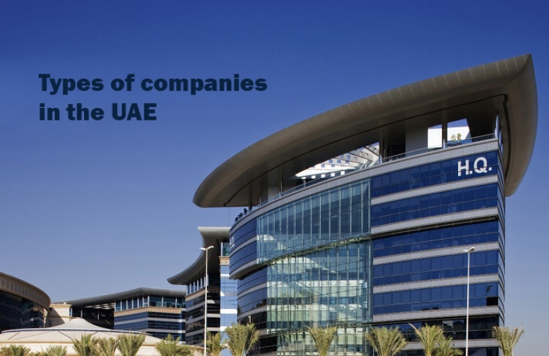 Main picture: Types of companies in the UAE