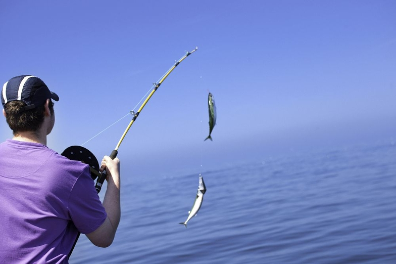 Main picture: Obtaining a fishing licence in UAE