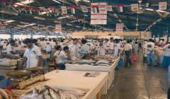 Article image: The fish market in Dubai