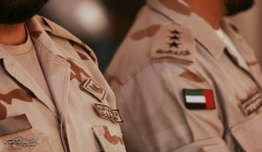 Article image: Military power of the United Arab Emirates